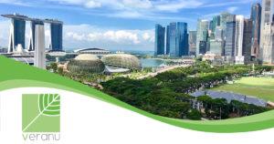 Veranu_Singapore